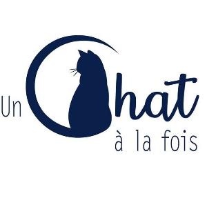 Un chat à la fois/ One cat at a time Logo