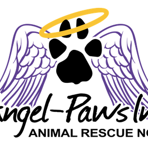 Angel Paws Inc Animal Rescue North Queensland Logo