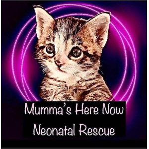 Mumma's Here Now Neonatal Rescue Logo