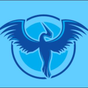 SkyWatch Bird Rescue Logo