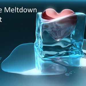 The Ice Meltdown Project Inc Logo