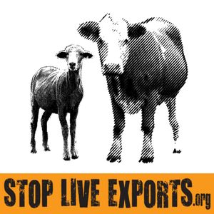 Stop Live Exports Logo