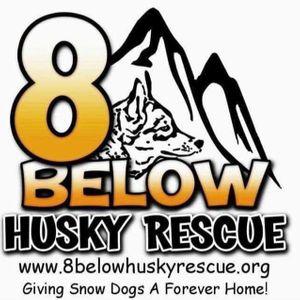 8 Below Husky Rescue Logo