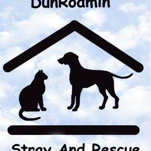 DunRoamin' Stray and Rescue Logo