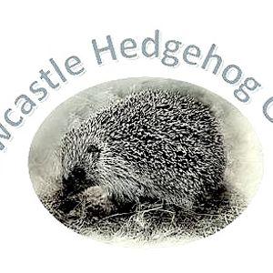 Newcastle Hedgehog Rescue Logo