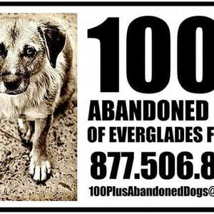 100 plus Animal Rescue Inc Logo