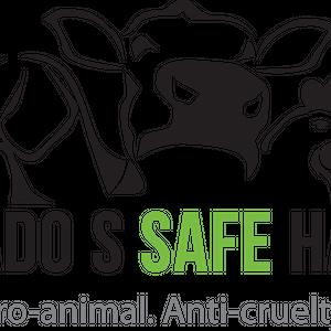 Pasado's Safe Haven Logo