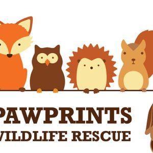 Pawprints Wildlife Rescue Logo