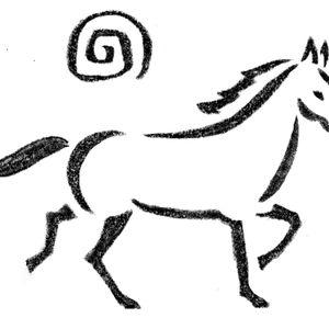National Mustang Association, Inc., Colorado Logo