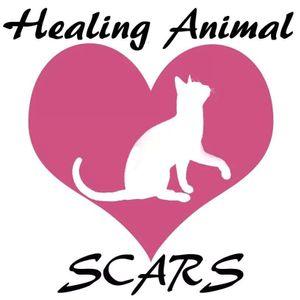 Healing Animal SCARS Logo