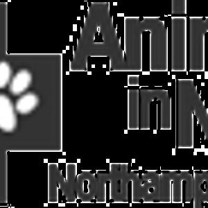 Animals in Need Logo