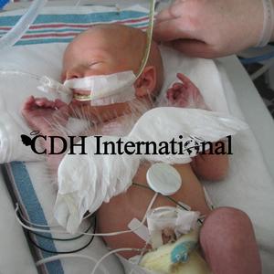 CDH International Logo
