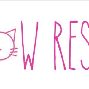 Meow Rescue Inc Logo