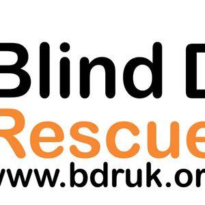 Blind Dog Rescue UK Logo