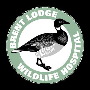 Brent Lodge Wildlife Hospital Logo