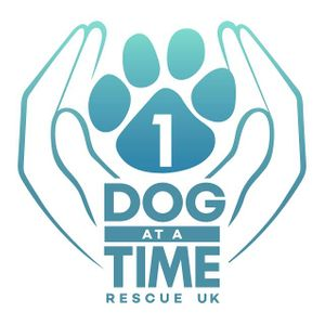 1 Dog At A Time Rescue UK Logo