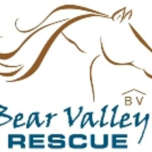 Bear Valley Horse Rescue Logo