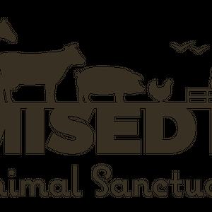 Promised Land Animal Sanctuary Logo