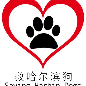 Saving Harbin Dogs Logo