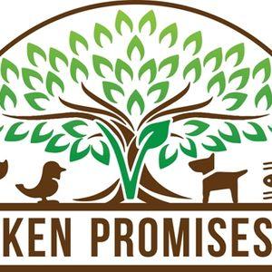 Broken Promises SW Logo