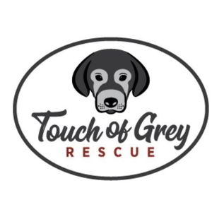 Touch of Grey rescue Logo
