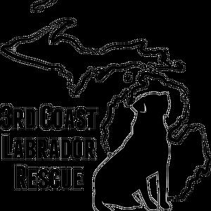 3rd Coast Labrador Rescue Logo
