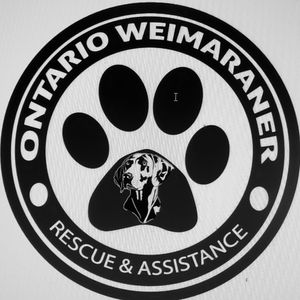 Ontario Weimaraner Rescue and Assistance Logo