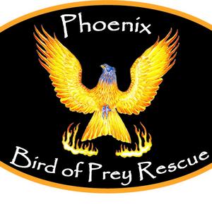 Phoenix bird of prey rescue Logo