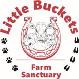 Little Buckets Farm Sanctuary Logo