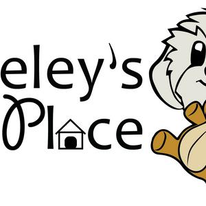 Berkeley's Place Logo