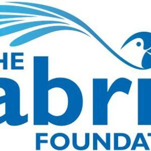 The Gabriel Foundation Logo