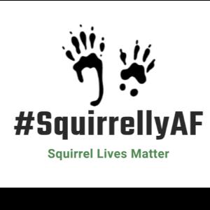 SquirrellyAF Inc Logo
