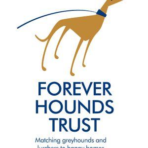 Forever Hounds Trust Logo