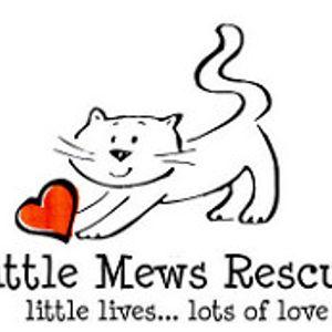 Little Mews Rescue Logo