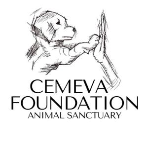 Cemeva Foundation Logo