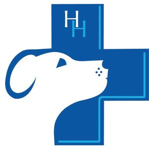 Hypo Hounds Logo