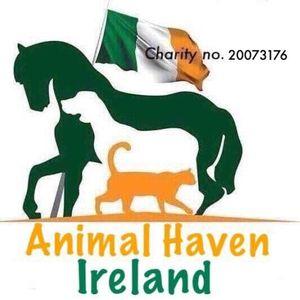 Animal Haven Ireland Logo