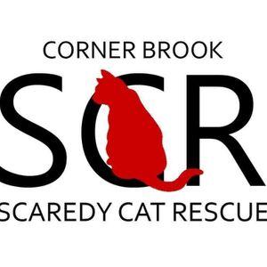 Corner Brook Scaredy Cat Rescue Logo