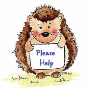 Hamble Hedgehogs Logo