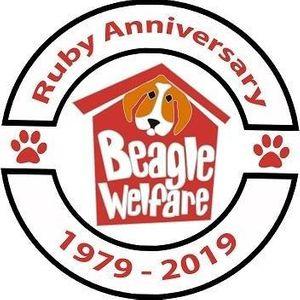 Beagle Welfare Logo