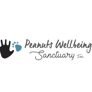 Peanuts Wellbeing Sanctuary Logo