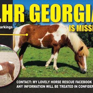 My Lovely Horse Rescue Logo
