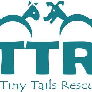 Tiny Tails Rescue Adelaide Inc Logo