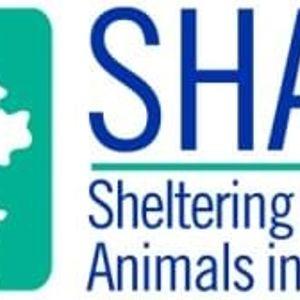 SHAID Tree Animal Shelter Logo