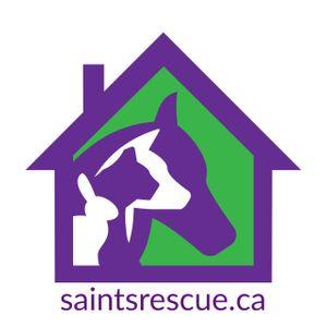 SAINTS Rescue Logo