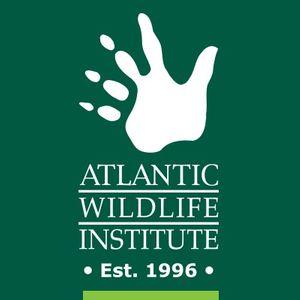 Atlantic Wildlife Institute Logo