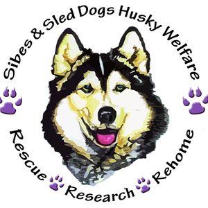 Sibes and sled dogs husky welfare Logo