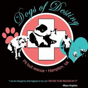 dogs of destiny Logo