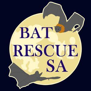 Bat Rescue South Australia - Adelaide Bat Chat Logo