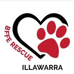 Best friends for ever rescue Illawarra Logo
